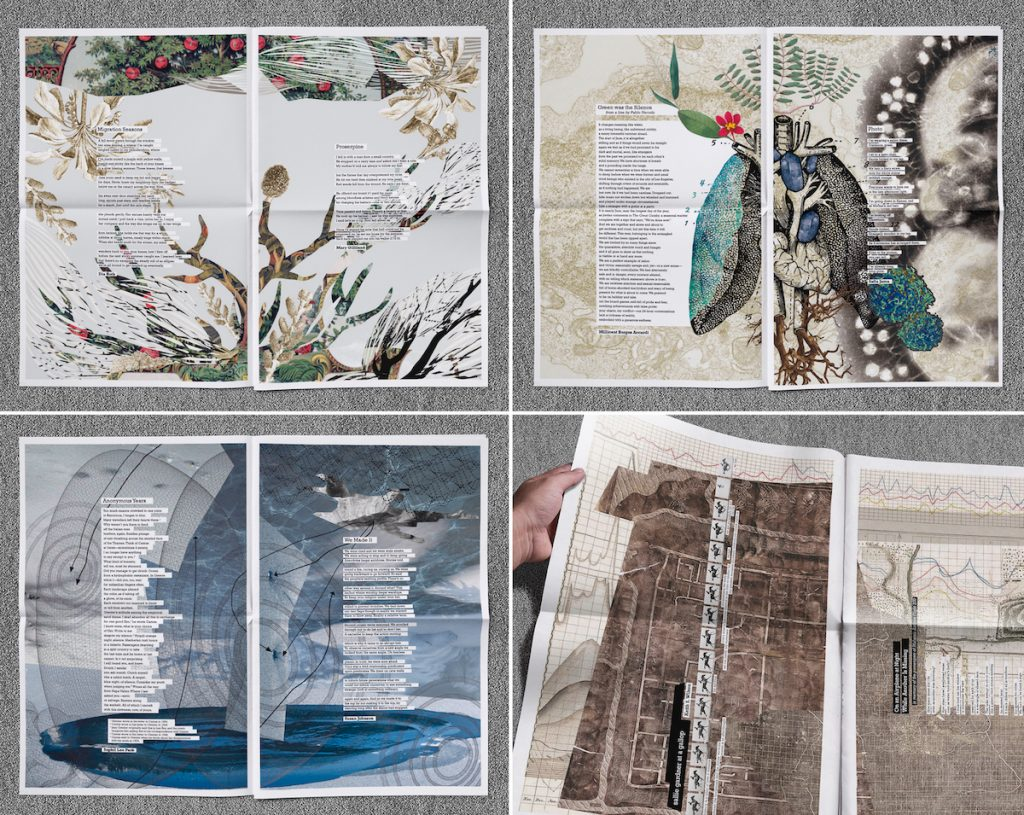 four image of tab journal unfolded facing pages